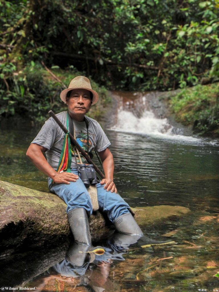 Olivio in La Nutria creek
